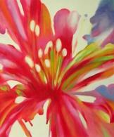 Obraz - Červený květ